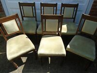 Dining Chairs x6