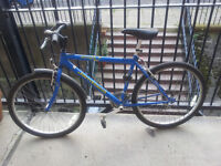 Raleigh jamtland mountain bike