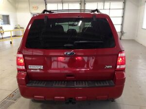 2011 Ford Escape XLT| SYNC| CRUISE CONTROL| BLUETOOTH| 133,370KM Kitchener / Waterloo Kitchener Area image 5