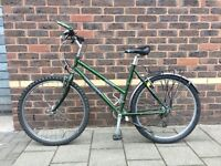 Ladies' Giant Mountain Bike