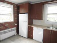 Sunny and Heated Renovated  4 1/2 near Prince of Whales (JULY)