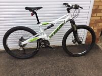 Cannondale Prophet Downhill Mountain Bike