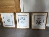 Flower picture frame print x3