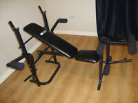 Pro Fitness Multi-Use Workout Bench