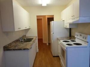 Large 3  Bdrm Suite -   $1045/mth Avail Feb 15th.
