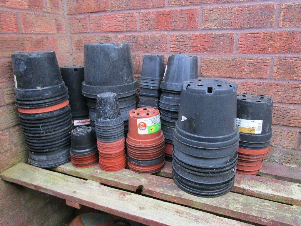 Free Plant pots, assorted shapes & sizes, over 100, need a clean, great for allotment, club, school