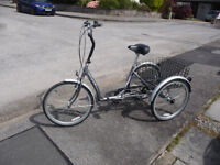 Space Genie Adult Tricycle 24in Wheels 6 Shimano gears Collapsible
