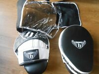 Boxing gloves and pads with holdal. Brand new, all used once.