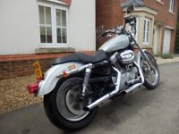 Harley Davidson XL 883 C Custom Crusier Bobber Chop low miles Superb New MoT