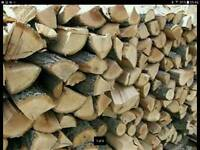 Logs fire wood