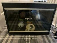 2ft vivarium With equipment