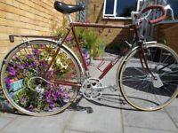 Dawes Galaxy touring bike / bicycle