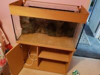 200l fish tank with accessories