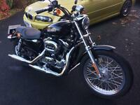 Harley Davidson Sportster 1200 (only 390 miles from new)