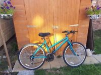 Ladies Universal Bicycle in good working condition