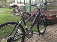 "Pendleton Brook 18"" Frame Bike Good Condition"