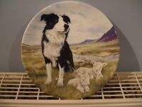 "Bradford Exchange Royal Grafton China 8"" Boarder Collie plate (THE HERO)"