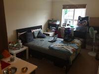 Large Double Room With (En-Suite), Bath Road, Hounslow West, TW4