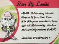 Mobile Hairdressing/Hairdresser .Portsmouth Southsea Milton Eastney North End Areas