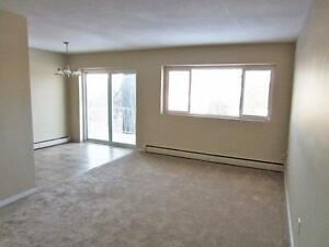 2 Bedroom London Apartment for Rent: On bus routes, by Fanshawe London Ontario image 1