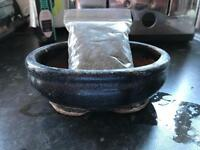 Bonsai tree pot