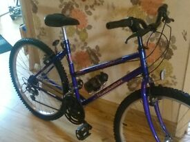 ladies Townsend Manhattan 15speed bike