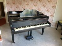 Baby Grand Piano Schubert