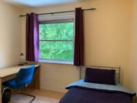 Lovely double bedroom to let in house share at Stepney green & Whitechapel