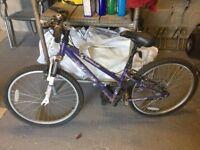 Apollo bike G24 girls bicycle