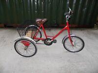 Tricycle Pashley Picador