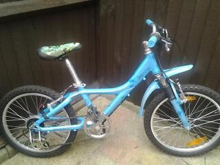 Boys Giant Bicycle 20 inch wheels