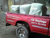 Haylage bales in quadrant 1150s meadow grass