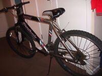 Reebok Trakker Mountain Bike - Collection Stockport