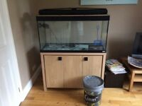 Fluval Roma 200 with Oak Cabinet and Equipment