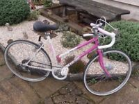 Townsend miss trendy racing bike