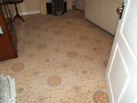 Lounge plus dining room carpet for sale two separate matching pieces total size 42sq mts.