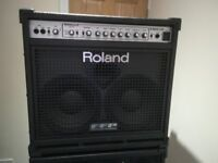 1000W Roland D-Bass 210 Combo Bass Amplifier with TWO 115X powered extensions