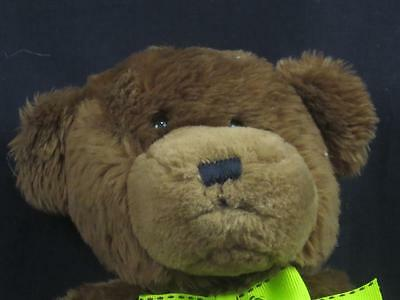 Proflowers  Brown Teddy Bear Black Nose Green Bow Stitch Plush Stuffed Animal