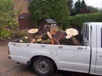 Truck Load Of LOGS.......................BARGAIN