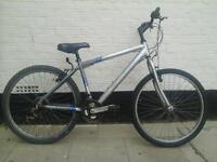 mens raliegh bike