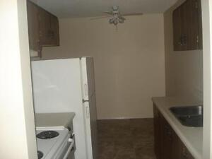 Bachelor Apt. available IMMEDIATELY - Close to Yellowhead Trail!