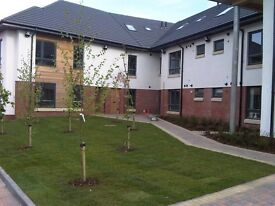 Rare opportunity - 1 bed apartment to rent at Library Apartments Blantyre
