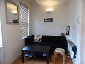 MODERN STUDIO WITH SEPARATE KITCHEN IN BATTERSEA RISE