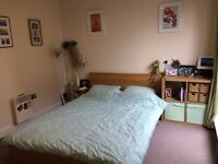Bright En Suite Room in Peckham