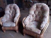 Gilda Cushioned Conservatory chairs