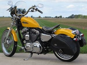 2013 harley-davidson XL1200V Seventy-Two   Chrome Yellow Pearl & London Ontario image 6