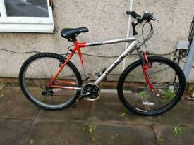 Reebok Edge mountain bike