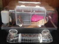 Hamster cage with houses and toys