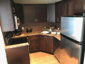Beautiful 2 Bedroom Condo near Whyte Ave, Avail. Oct 1st, $1200!