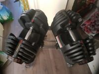 Bowflex 90 dumbbell weights and stand
